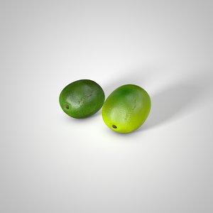 3D lime realistic model