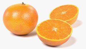 orange halves 3D model