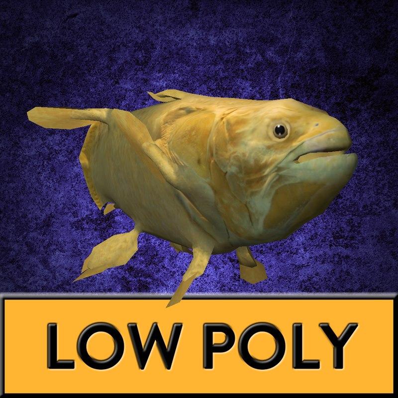 coelacanth fish 3D model