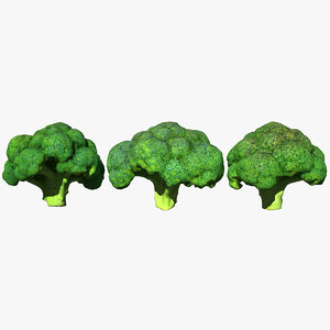 broccoli scan 3D
