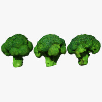 3D broccoli scan model