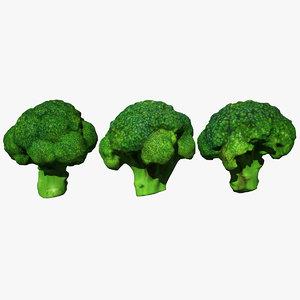 3D broccoli scan model
