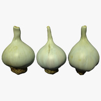 3D model garlic scan
