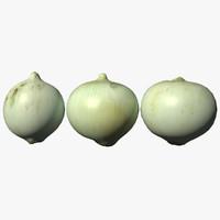 3D onion scan model