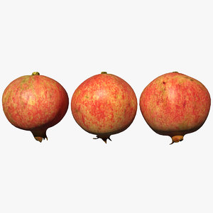 pomegranate scan 3D