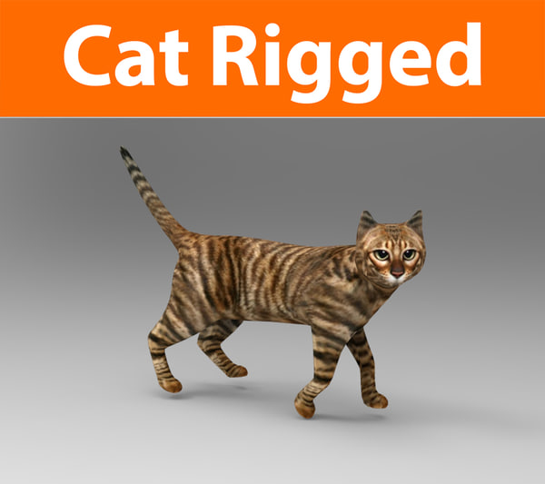 cat rigged model