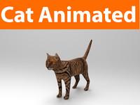 cat animated(1)