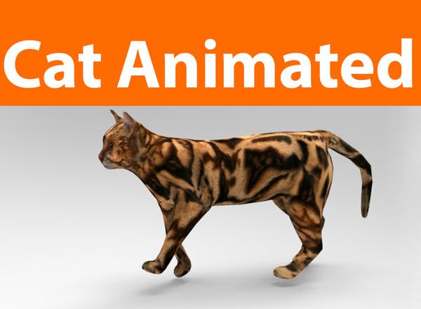 3D cat animations model