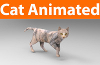 3D cat animations model