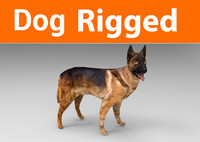 german shepherd dog rigged