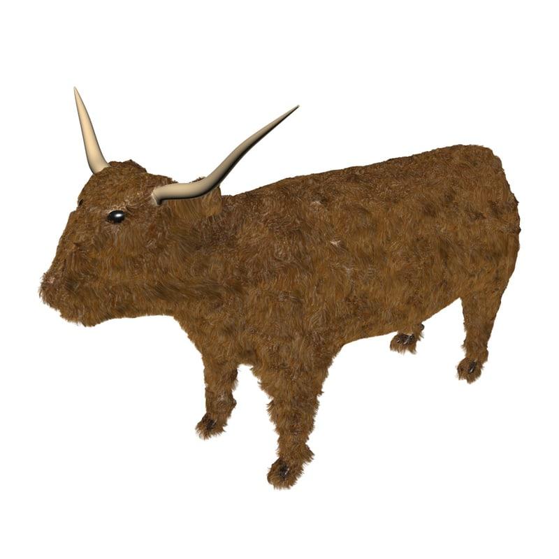 highland cattle 3D model