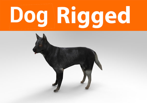 3D german shepherd dog rigged model