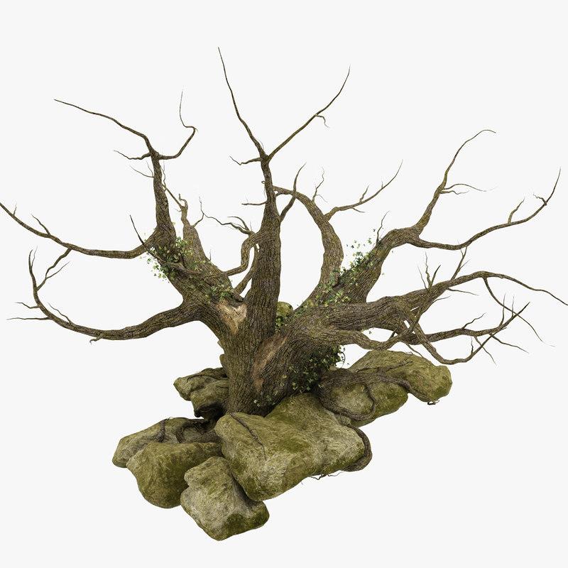 old oak tree 3D