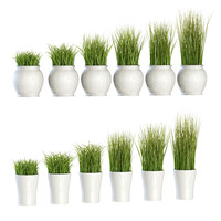 grass pots 3D model