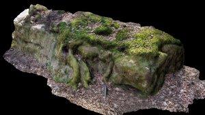 3D rock scanned tree forest model