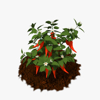 3D model cartoon plants