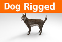3D german shepherd dog rigged