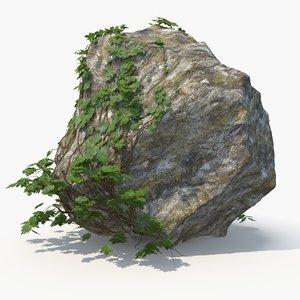 3D realistic ivy rock
