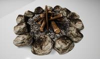 3D tca campfire