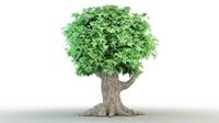 Cartoon_Tree