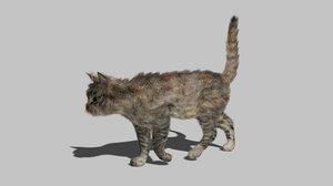 cat rig - 3D