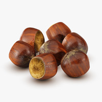 hazelnut ingredient nutty 3D model