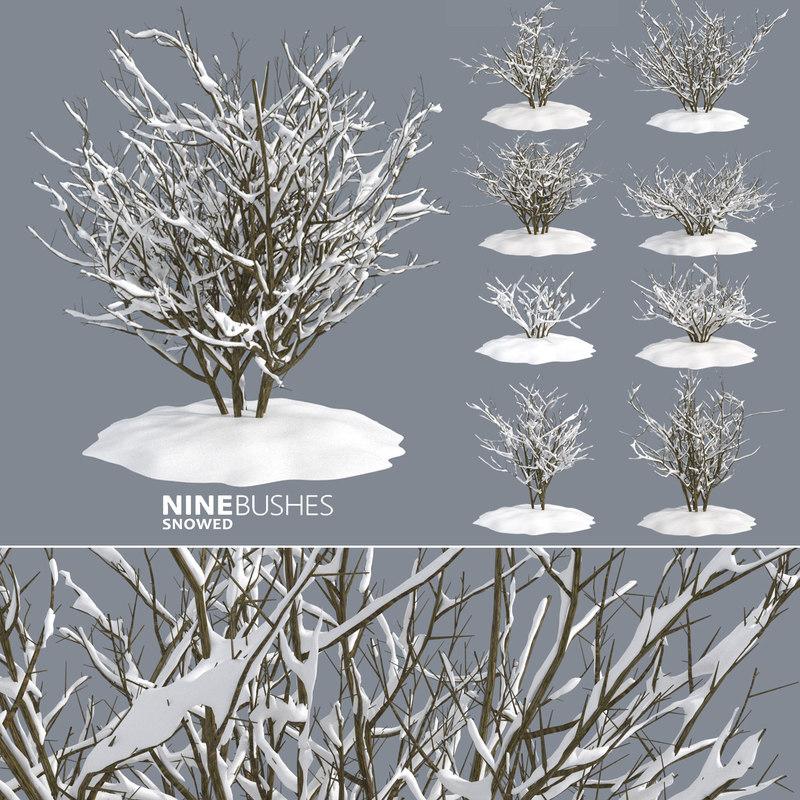 winter bushes 3D model