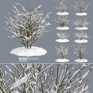 winter bushes 3D model