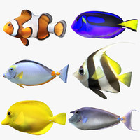 saltwater fish set scanline 3D model