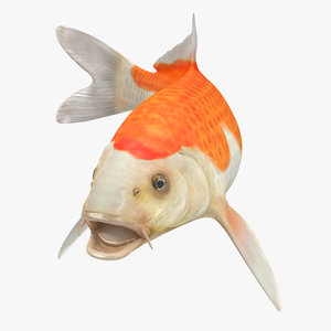 harivake koi fish rigged 3D model