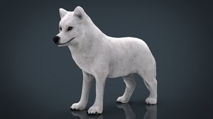 artic wolf model