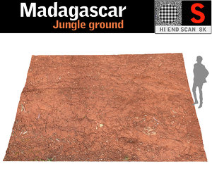 madagascar jungle ground 3D model