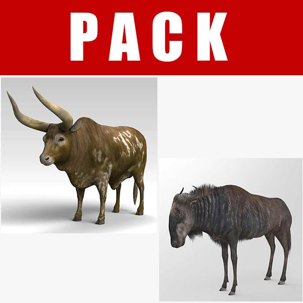 3D ankole wildebeest