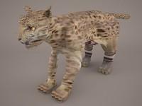 animal cheetah 3D model