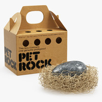 3D pet rock