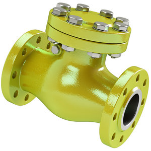 3D model check valve
