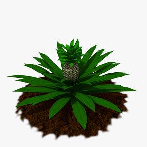 pineapple plants 3D
