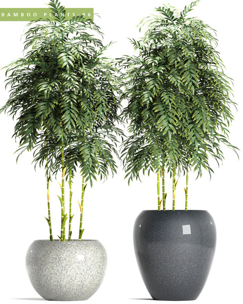 3D bamboo plants model