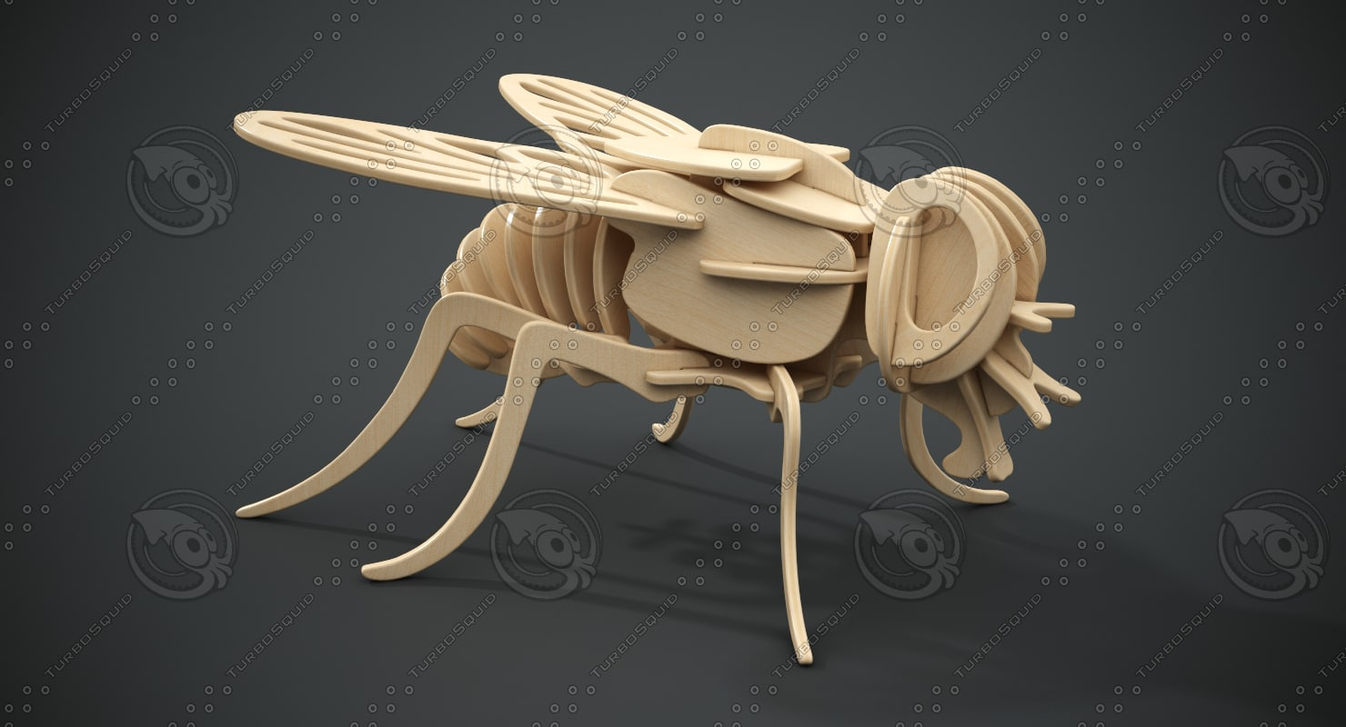 buzzy-wuzzy busy fly wooden 3D model