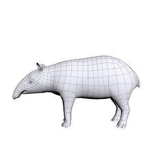 3D tapir base