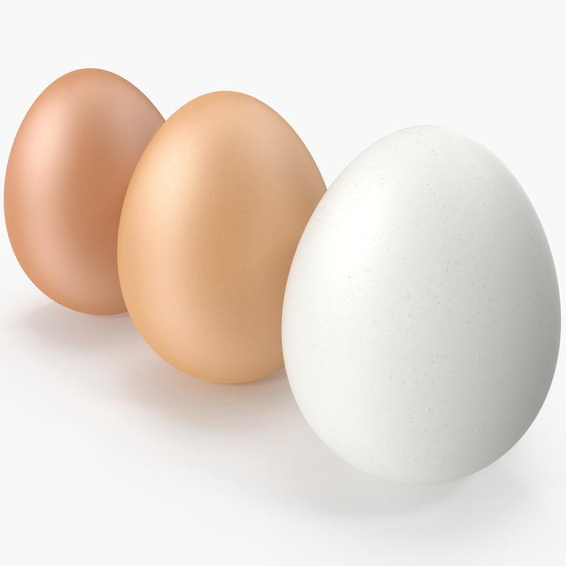 realistic eggs 3D model