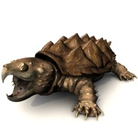 alligator snapping turtle model