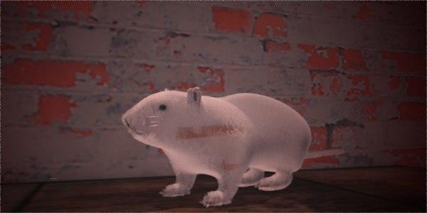 furry rat 3D