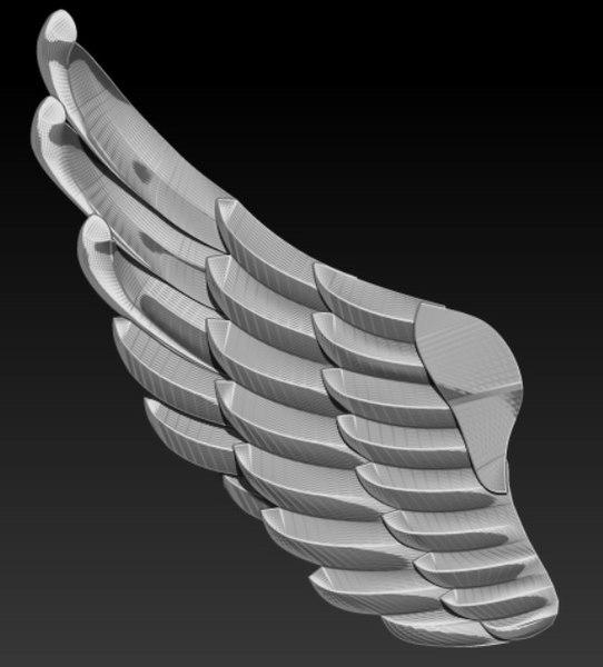 3D model animal wing