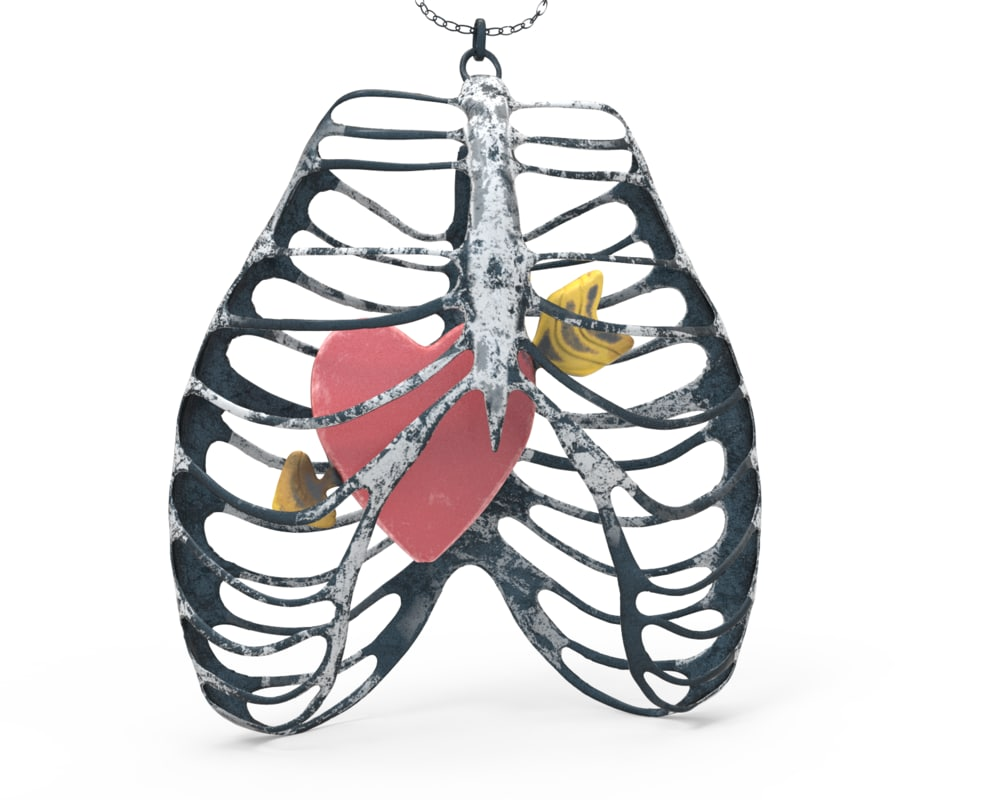 rib cage necklace heart 3D