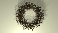jesus crown thorns 3D