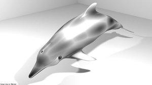 3D coastal dolphin