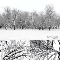Eleven Trees 2 (Snowed)