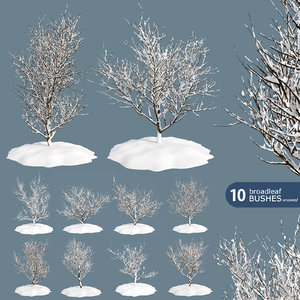 3D 10 bushes snow