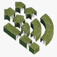 Hedge 400x400(h)